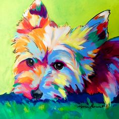 """""""Tinsley"""" 12""""x12"""" acrylic on canvas, contemporary dog pet portrait of a yorkie, yorkshire terrier."""