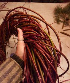 Krans av Sibirkornell ved hjelp av en enkel fletteteknikk.   SkarpiHagen Dreadlocks, Hair Styles, Beauty, Pictures, Witch, Hair Plait Styles, Hair Makeup, Hairdos, Haircut Styles