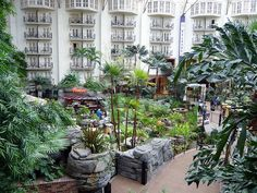 Opryland Hotel in Nashville, TN. To stay in one of the rooms with a balcony.