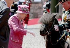 Delighted: The monarch, who has a lifelong love of horses, reached out to pet the pony's nose