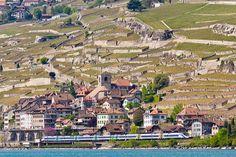 St Saphorin, Switzerland