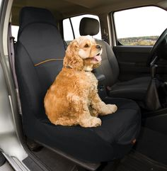 Kurgo Dog Products - CoPilot Bucket Seat Cover, $35.00 (http://www.kurgo.com/car-seat-covers/copilot-bucket-seat-cover/)