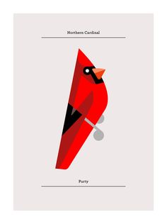 Northern Cardinal print