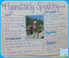 Tell Me a Story Tuesday: Figurative Language - using a picture/photo to create figurative language
