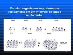 Os microorganismos reproduzem-se rapidamente em um intervalo de tempo muito curto.  02:00 64 00:00 1 00:20 2 00:40 4 01:00...