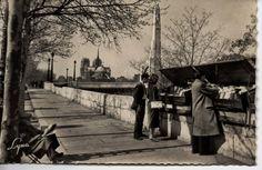 booksellers along the Seine Paris, France, Painting, Antique Post Cards, Montmartre Paris, Painting Art, Paris France, Paintings, Painted Canvas