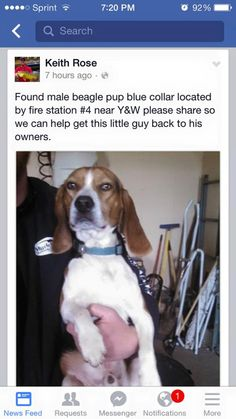 Barb PressleyLincoln County MO Lost and Found Animals