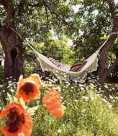 Hammocks are simply the best. Especially over a bed of daisies