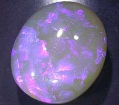 Black Opal Auction #409018 Opal Auctions