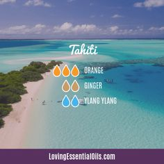 Tropical Essential Oils with Diffuser Blends - 10 Staycation Recipes Edens Garden Essential Oils, Essential Oil Scents, Essential Oil Diffuser Blends, Essential Oil Uses, Doterra Essential Oils, Young Living Essential Oils, Velas Diy, Plant Therapy, Diffuser Recipes