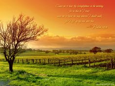 psalm images   1012-Psalm-143-8