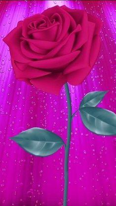Flower Wallpaper, Wallpaper Ideas, Wallpaper Backgrounds, Colorful Garden, Beautiful Roses, Phone Wallpapers, Flower Designs, Cherry, Coding