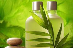 Herbal Health Care: How to Make Hemp Shampoo