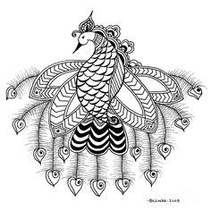 peacock drawings