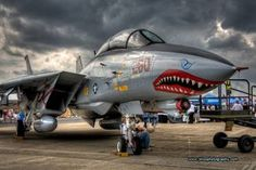 F-14 TOMCAT AWESOME (MEAN LOOK)