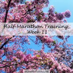Half-Marathon Training, Week 11, plus links to Weeks 1-10 and running essentials!