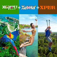 Tour Xcaret - Xel-Há - Xplor: Enjoy an unforgettable vacation with the 3 major attractions in Cancun and Riviera Maya.