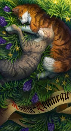 Warriors cats - Billy-Storm and Leafstar by Cat-Patrisiya on DeviantArt
