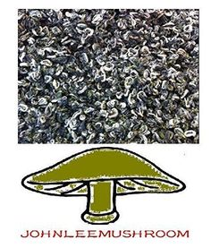 Green Tea From China, Premium Grade 730 Gram Loose Leaf Bag Packing JOHNLEEMUSHROOM http://www.amazon.com/dp/B00WBQ25EU/ref=cm_sw_r_pi_dp_Vliuwb0VNNGTG