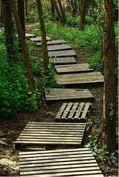"Pallet walkway ""I want all of them"""