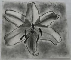 Orquídea 4