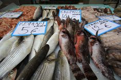 many varieties of fresh fish to choose from daily