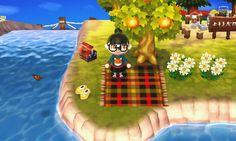 http://omochi-ac.tumblr.com/post/151513918338/picnic-rug