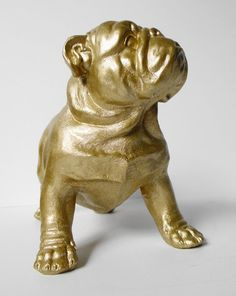 Bulldog, British Bulldog, Gold, Bulldog Ornament, English Bulldog, Gold Bulldog, Hodi Home Decor, Bulldog Figurine, Dog Figurine