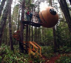 the most awesome tree house