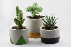 concrete pots in green, copper and black