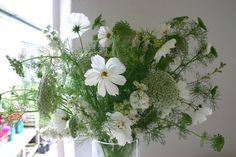 White cosmos and ammi visnaga all grown, cut and tied at www.commonfarmflowers.com