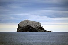 The Bass Rock / North Berwick,Scotland.