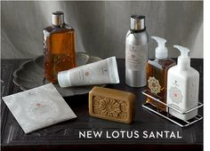 Another line of scented goodies, for cleaning self and house. Why be ordinary?