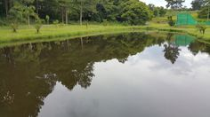 """""""Vista do lago"""", Clube Giovana, Farroupilha RS BR By @luccks (Galaxy Note4 full res)"""