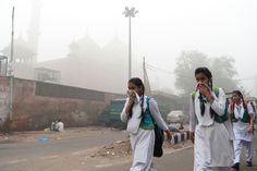 I chose this image because it verifies that pollution is an external factor effecting human bodies. And this is a problem many cities want to solve. Because many people died because of pollution. And this image shows a very important pollutant which is throwing and spreading garbage everywhere.
