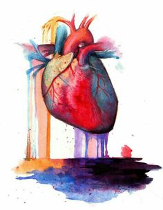 human heart watercolor results - ImageSearch Arte Com Grey's Anatomy, Anatomy Art, Watercolor Heart, Watercolor Drawing, Tattoo Studio, Art Couple, Medical Art, Heart Painting, Anatomical Heart