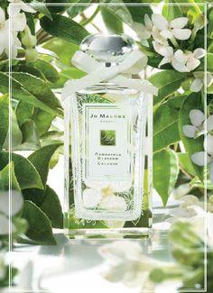Jo Malone Osmanthus Blossom http://www.sandrascloset.com/jo-malone-osmanthus-blossom/