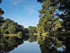 Landscape Reflection at Sea Pines Plantation