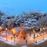 Punta Arenas, Chile   #Travel #Cruise