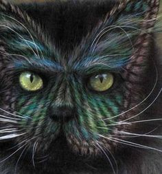 Painted cats via betaphilings.com