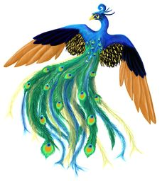peacock.png Photo:  This Photo was uploaded by lorenith. Find other peacock.png pictures and photos or upload your own with Photobucket free image and vi...