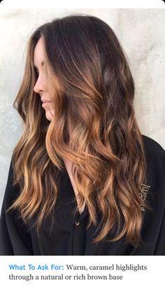 Warm Carmel highlights on rich brown hair