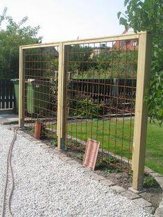 300 400 pixels 2019 300 400 pixels The article … - Diy Garden Projects Grape Trellis, Trellis Fence, Garden Fencing, Garden Beds, Garden Dividers, Vertical Garden Wall, Fence Landscaping, Garden Structures, Garden Planning
