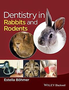 Veterinary E-Books: Dentistry in Rabbits and Rodents