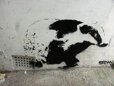 Urban badger art