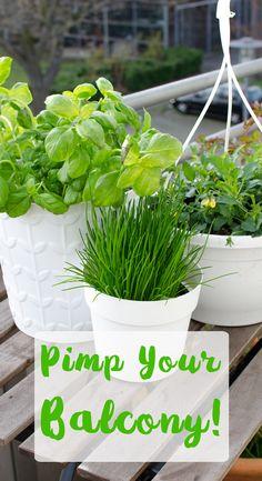 geraumiges schoene dinge leicht gemacht kraeuter aromatisch und dekorativ groß bild der cadafdeaddd urban gardening home living