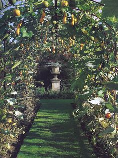 The gourd tunnel at Helmingham Hall, East of England