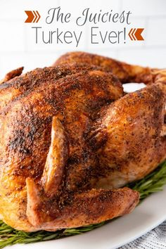 Learn how to make the juiciest turkey! All it requires is a few key tricks and a good set of thermometers to have a juicy turkey recipe people will rave over. turkey recipe Juiciest Turkey Recipe Ever Roast Turkey Recipes, Chicken Recipes, Whole Turkey Recipes, Turkey Marinade, Butterball Turkey, Brine Recipe, Sausage Recipes, Pumpkin Recipes, Thanksgiving Menu
