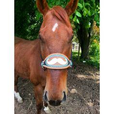 Custom Mustache Bronc Halter for mr. Sparks! Bronc Halter, Horse Tack, Mustache, Horses, Animals, Animales, Moustache, Animaux, Animal