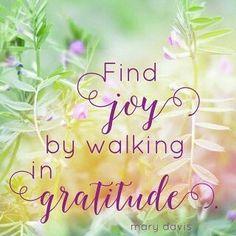 Find joy by walking in gratitude Joy Quotes, Life Quotes Love, Gratitude Quotes, Attitude Of Gratitude, Humble Quotes, Qoutes, Gratitude Journals, Grateful Quotes, Wife Quotes